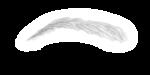 microblading-300x149